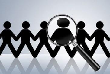 Optimal expands team