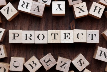 ABI: 97.7% of all types of protection policy claims are paid